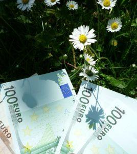 Blumen und Geld 3 (2)